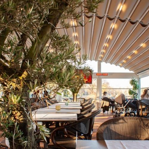 palmiye terrassenueberdachung gastronomie klein kalfje 2 500x500 - Terrassenüberdachung Gastronomie - Referenz Projekt - in Kellenhusen